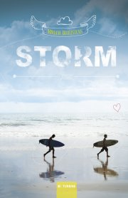 storm - bog