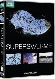 supersværme - DVD