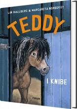 teddy i knibe - bog