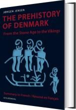 the prehistory of denmark - bog