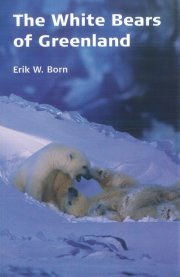 the white bears of greenland - bog