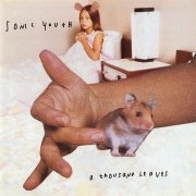 sonic youth - thousand leaves - Vinyl / LP