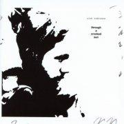 rich robinson - through a crooked sun - cd