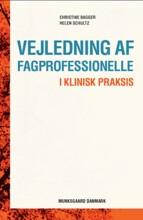 vejledning af fagprofessionelle - bog