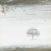 genesis - wind and wuthering - Vinyl / LP