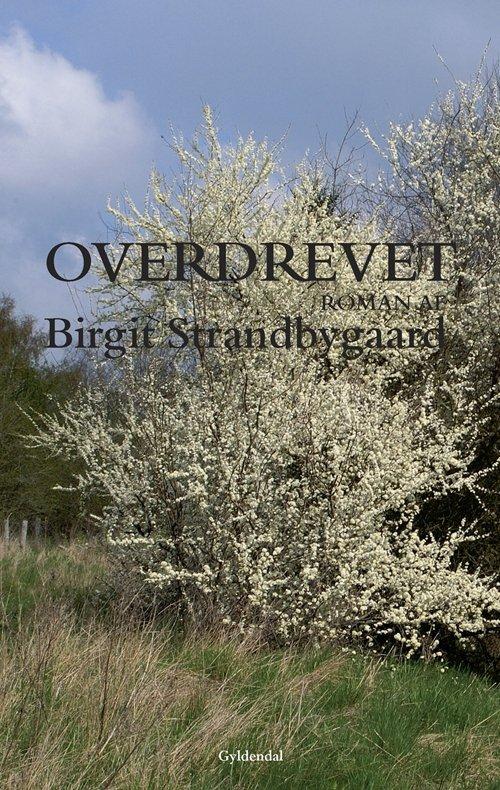 Birgit Strandbygaard - Overdrevet - Bog