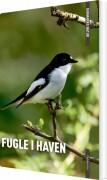 danmarks natur fugle i haven - bog