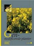 genmodificerede planter  - 7