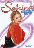 sabrina - skolens heks - sæson 4 - DVD
