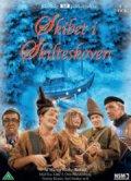 skibet i skilteskoven - tv2 julekalender - DVD