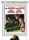 swamp water - DVD