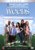 weeds - sæson 1 - DVD