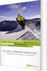 action learning consulting - bog