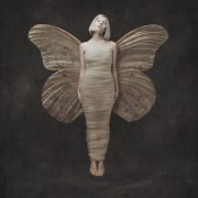 aurora - all my demons greeting me as a friend - Vinyl / LP