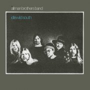 the allman brothers band - idlewild south - Vinyl / LP