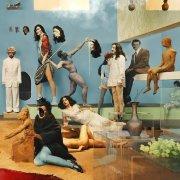 yeasayer - amen & goodbye - Vinyl / LP