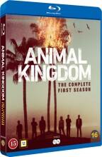 animal kingdom - sæson 1 - Blu-Ray