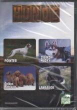 animal planet - hunde - DVD
