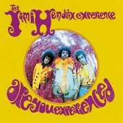 the jimi hendrix experience - are you experienced  - Vinyl / LP