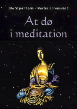 at dø i meditation - bog