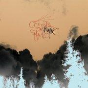 comets on fire - avatar - Vinyl / LP