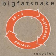 big fat snake - recycled - cd