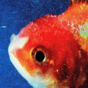 vince staples - big fish theory - Vinyl / LP