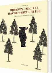 bjørnen, som ikke havde været der før - bog