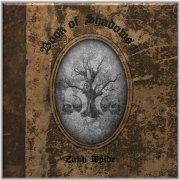 zakk wylde - book of shadows ii - Vinyl / LP