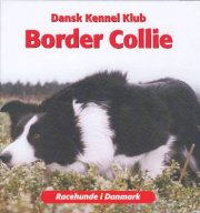 border collie - bog