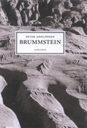 brummstein - bog