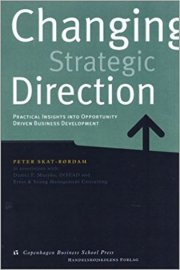 skat-rørdam, changing strategic direction - bog