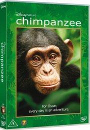 chimpanzee - disneynature - DVD