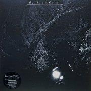 cocteau twins - the pink opaque - Vinyl / LP