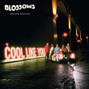 blossoms - cool like you - Vinyl / LP