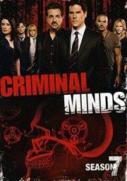 criminal minds - sæson 7 - DVD