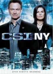 csi: new york - sæson 8 - DVD