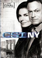 c.s.i. new york - sæson 9 - DVD