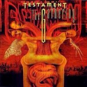 testament - the gathering - cd