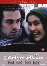 den fremmede / gadjo dilo - DVD