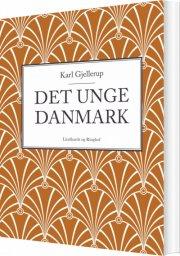 det unge danmark - bog