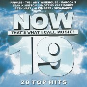 - now thats what i call music 19  - Top 20 Hits
