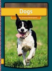 dogs - bog