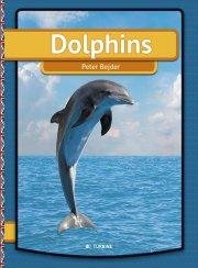 dolphins - bog