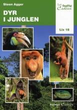 dyr i junglen - bog