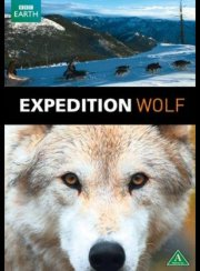 expedition wolf - DVD