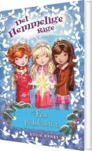 det hemmelige rige - fest på juleslottet - bog