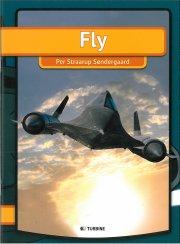 fly - bog