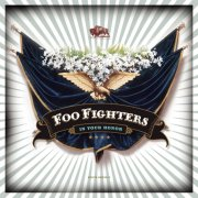 foo fighters - in your honor - cd