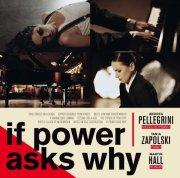 martin hall andrea pellegrini and tanja zapolski - if power asks why - cd